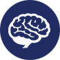 brain_icon01.png